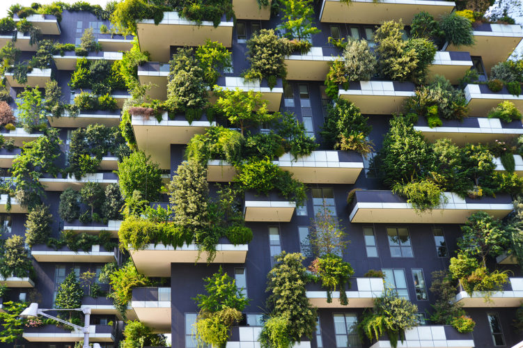Urban Greening: the future of nature in our cities